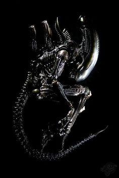 "BLOGS ON - A Plea for Publication Order (""Alien) http://isawlightningfall.blogspot.com/2014/03/a-plea-for-publication-order-alien.html"