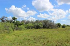 Ruby Ranch - The historical property of Ruby Ranch is a 747-acre ranch located in Hays County. This property provides high quality water run-off and recharge to the Barton Springs segment of the Edwards Aquifer. Conservation efforts ensure that native rangeland, which provides habitat for a vaiety of native birds, mammals, reptiles, amphibians, and other wildlife remain protected in their natural state.