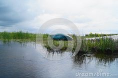 Landscape from the Danube delta with boat, Romania