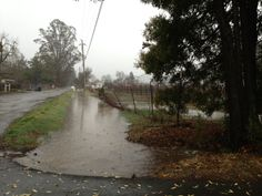 Roads and creeks are full!