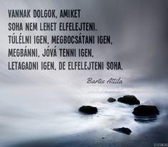 Bartis Attila idézete a felejtésről.
