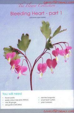 Bleeding Heart Flower gumpaste flower tutorial