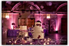 Purple decadence in the Grand Salon (photo by Claudia Akers Photography).