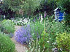 Der blaue Garten Plants, Blue Garden, Pictures, Flora, Plant, Planting