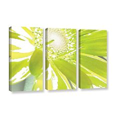 ArtWall Herb Dickinson 'Gerber Time IV' 3-Piece Gallery Wrapped Canvas Artwork, 32 by 72-Inch * Check out the image by visiting the link.