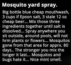 As far as possible, this post will concentrate on pest control tips that would assist keep away as much pests as you can. Some of the advises provided here will deal on specific pests but some may … Simple Life Hacks, Useful Life Hacks, Mosquito Yard Spray, Just In Case, Just For You, Insecticide, Weed Killer, Insect Repellent, Do It Yourself Home