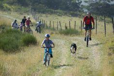 Randonnée buissonnière VTT en famille, à prévoir lors de vos vacances dans les Hautes-Alpes. Bicycle, Provence, Vehicles, Trek Mtb, Mountains, Exit Room, Vacation, Bicycle Kick, Provence France
