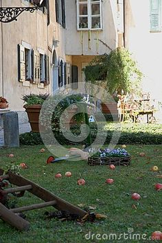 Photo made at the castle and the village of Strassoldo Friuli (Italy). In the image you see the turf that is in front of the facade of the castle which is located opposite the church of St. Nicholas. In the green of the grass you see: a few pegs gods a wooden staircase, red apples and a vase of flowers in various colors.