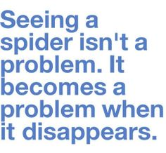 Seeing a spider isn't a problem.  It becomes a problem when it disappears.