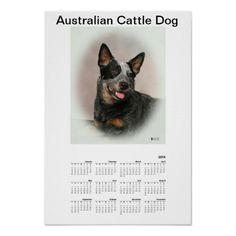 2014 Blue Heeler (ACD) Poster Calendar