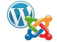 Gurú de la  informática: Herramienta de test de penetración para WordPress ...