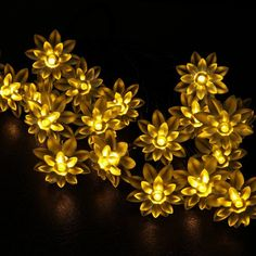 best Waterproof 20 Leds Blossom Double Lotus Fairy Solar String Lights flower lighting for Garden Home Christmas Party Wedding decoration (Warm White) Solar String Lights, String Lights Outdoor, Globe Lights, Wall Lights, Christmas Globes, Cherry Flower, Solar Led, Fairy Lights, Solar Power