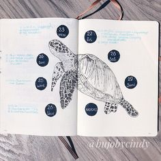The last weekly in my ocean theme. I loved this theme so much! 🌊 I am kind of sad that it is almost over. What is your August theme going… Bullet Journal August, Bullet Journal Spread, Bullet Journal Ideas Pages, Bullet Journal Inspiration, August Themes, Ocean Themes, Journal Notebook, Booklet, Notebooks