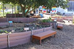 http://www.greenschoolyards.org