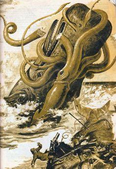 Calamar Gigante, un depredador en plena pelea con un ballena Cachalote The largest, toothed predator.