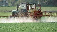 In Deutschland werden 40 Prozent der Felder mit dem Herbizid Glyphosat besprüht. Ackerbau ohne den Unkrautvernichter ist für viele Landwirte kaum vorstellbar. Felder, Country Living, Tractors, Blessing, Germany, Country Life, Tractor, Outdoor Living, Res Life
