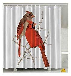 Vintage Cardinals - Graphic Shower Curtain with Hooks - 69 Width x 70 Length  //Price: $ & FREE Shipping //     #Bathroom Shower Curtain Sets, Cardinals, Hooks, Curtains, Free Shipping, Bathroom, Vintage, Washroom, Blinds