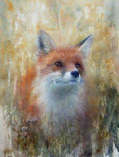 Fox Art | Compassing Swedish North - Wildlife Art Journal