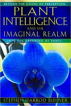 Plant Intelligence and the Imaginal Realm: Beyond the Doors of Perception into the Dreaming of Earth: Buhner, Stephen Harrod: 0884639971432: Amazon.com: Books