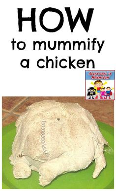 How to mummify a chicken, project to do with your kids as you study Ancient Egypt