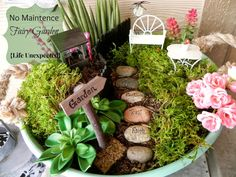 Heres What Youll Need To Make Your Own.Fairy Garden Supplies In Canada