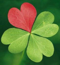 Brumley Irish Smiles - It is that weekend where everyone is Irish no matter who you are in your family tree. Heart In Nature, Heart Art, Love Heart, Green Beer, Irish Eyes, Irish Blessing, Luck Of The Irish, Plantation, Four Leaf Clover