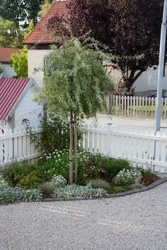 Backyard Landscaping Ideas - Browse landscapes as well as gardens. Discover brand-new landscape layouts as well as suggestions to boost your house's aesthetic charm. The Secret Garden, Front Yard Design, Corner Garden, Front Yard Landscaping, Landscaping Ideas, Diy Garden Decor, Dream Garden, Garden Planning, Garden Inspiration