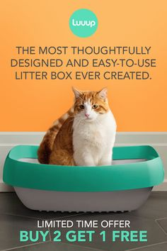 Toss your scoop and ditch your litter liner. Meet the only litter box you'll want to come home to.