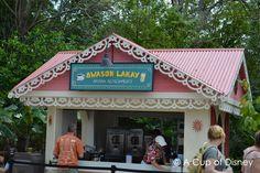 Bwason Lakay Haitian Refreshments at the Epcot Flower & Garden Festival