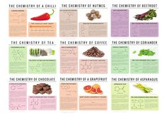Chemistry of Food infographic meme Imgur
