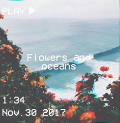 M O O N V E I N S 1 0 1 #vhs #flowers #ocean #aesthetic