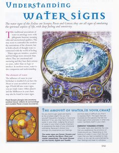 Astrology: Understanding Water Signs [I'm very watery - Cancer sun, Scorpio moon, Chinese zodiac - Water Pig] Astrology Numerology, Astrology Zodiac, Zodiac Signs, Water Signs Zodiac, Astrology Meaning, Horoscope Capricorn, Capricorn Facts, Scorpio Moon, Astrology Signs