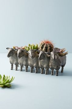 Slide View: 1: Row of Sheep Planter