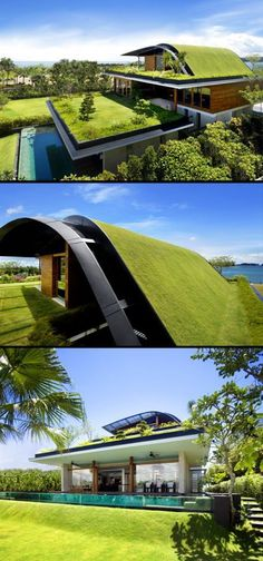 20 Must-See Buildings that have Breathing Lush Walls and Green Roofs - 08 The Meera House