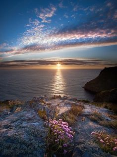 Cliffs at sunset: Boscastle, Cornwall