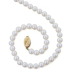 14KT Yellow Gold White Fresh Water Cultured Pearl 6mm Pearl Necklace with options to come in a 16 inch, 18 inch, and 20 inch  325-46-1718