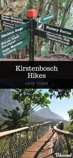 Kirstenbosch garden is lovely and hiking here would offer spectacular views. Hiking Spots, Hiking Trails, Forest Waterfall, Table Mountain, Africa Travel, Cape Town, Egypt, Places To Go, Explore
