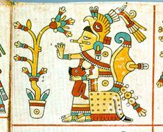 Xochiquetzal, Codex Fejervary-Mayer
