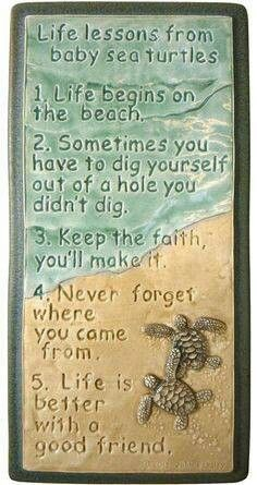 Life Lessons learned from baby Sea Turtles . Pin It if you just love baby sea turtles, we sure do! Lots of cute sea turtles are made in Florida, just like our DeckBagZ. We're all just paddling along the beaches! Ceramic Wall Art, Tile Art, Ceramic Decor, Beach Quotes, Me Quotes, Ocean Quotes, Baby Sea Turtles, Sweet Turtles, Turtle Love