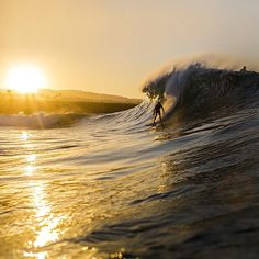 Early bird catches the worm. Tribesman Tommy Cantrell at the Wedge. Photo by Jeff Davis. #hippytreetribe #surfandstone