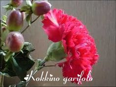 Kokkino garifalo GIANNIS PARIOS -HARIS ALEXIOU - YouTube