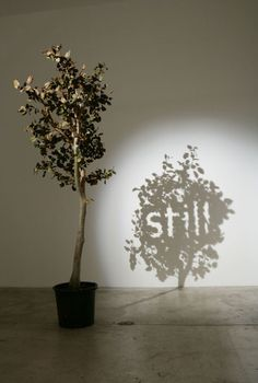 PROJECT 5: ALTERNATIVE MATERIAL EXAMPLE: shadow installations - Kumi yamashita