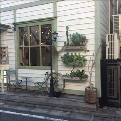 Cactus house in Uehara Tokyo.