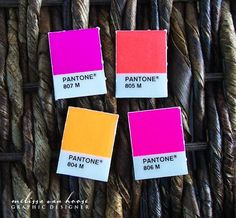Pantone kitchen magnets created from authentic Panctone color chips