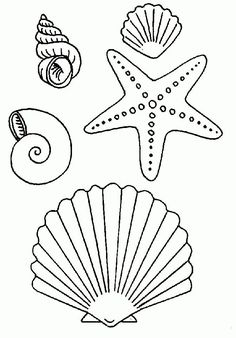 Sea Shells Coloring Page Inspirational Many Types Of Seashells and Starfish Coloring Page Fish Coloring Page, Colouring Pages, Coloring Sheets, Coloring Books, Diy And Crafts, Crafts For Kids, Arts And Crafts, Painted Rocks, Sea Shells