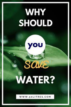 Do you think the water you can save is insignificant? And, that trying to do it will make no difference? If so, read this. What you choose to do matters, and this is why. #lovewater #sustainability #conservation