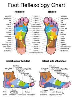 Seeking Healthy Tips On How To Get A Good Massage? Check This Out! It is easier than you might think to give a really good massage. You could educate yourself with an expensive massage therapy course, or you could just rea Foot Chart, Reflexology Massage, Foot Reflexology Chart, Reflexology Sandals, Reflexology Points, Acupressure Points, Lymph Massage, Acupuncture Points, Face Massage