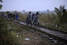 magyarország migráció 2015 - Google keresés