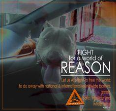 A world of reason.
