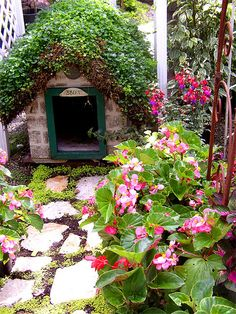 "Adorable Dog house ...Love covering the roof in moss ... use moss paint....paint wood to have ""cottage look"" ... make big enough for Bella and Brodie"